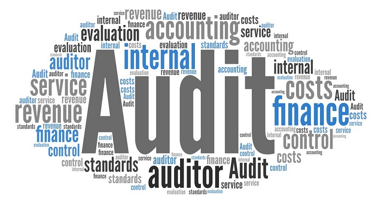The Future of the Financial Audit