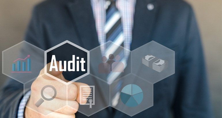 How Approved Auditors Perform Tax Audit?