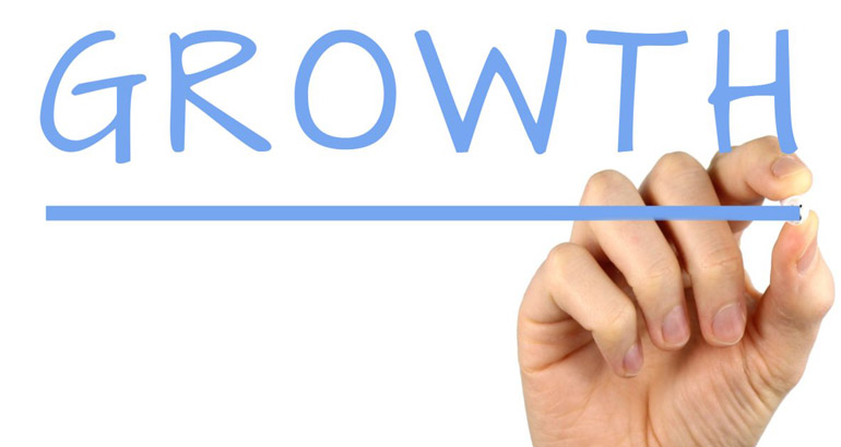How Can Professional Cash Flow Services Boost Your Business Growth?